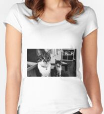 Adorable Kittens Women's Fitted Scoop T-Shirt