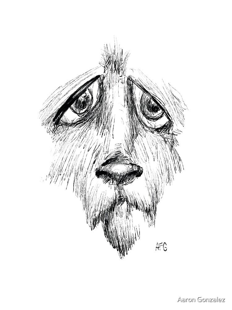 Sad Eyes Puppy by Aaron Gonzalez