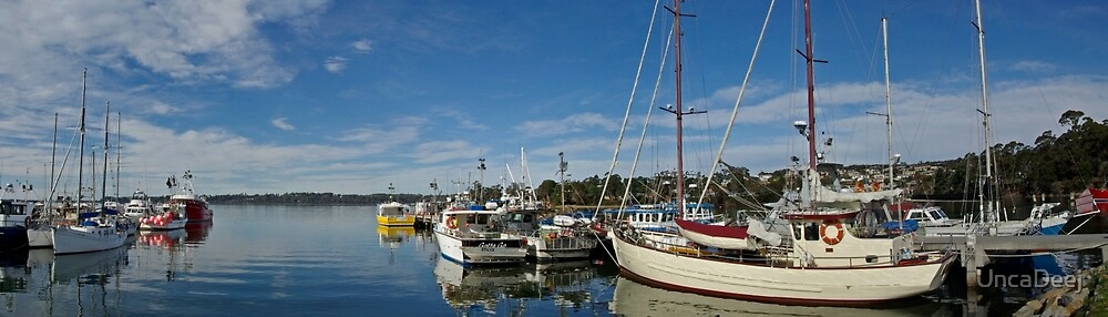 St Helens,Tasmania by UncaDeej