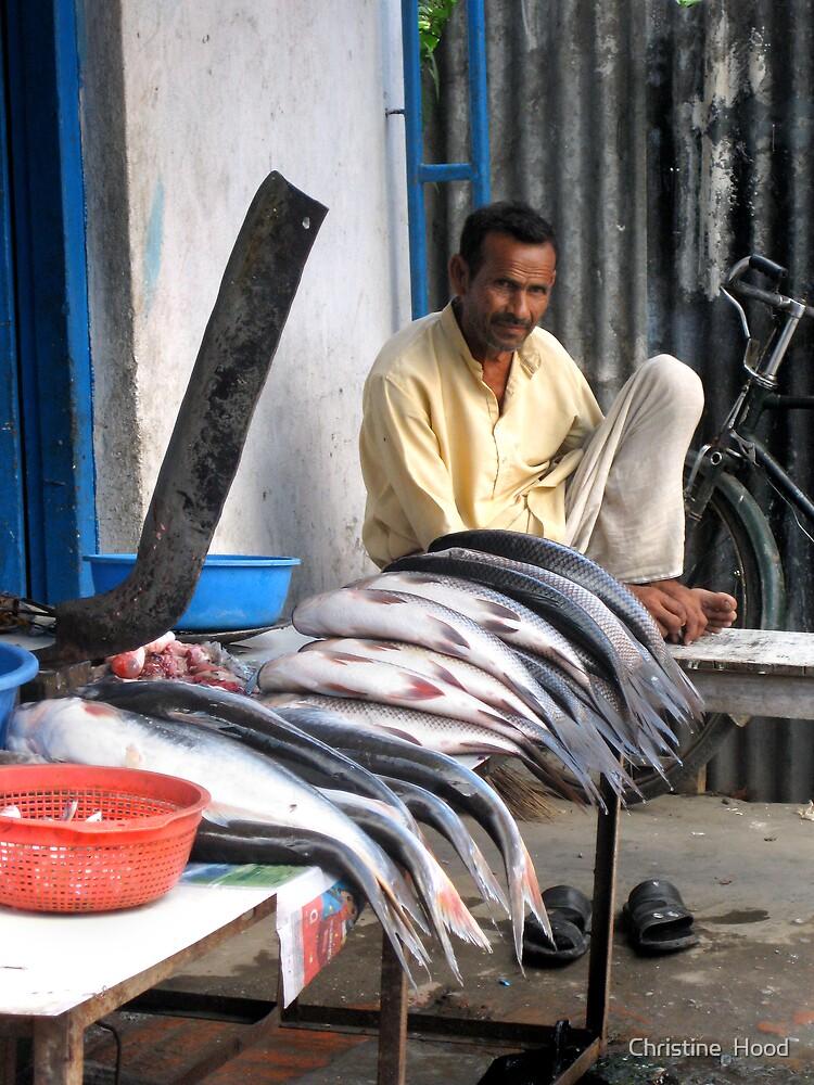 Nepalese Fisheries by Christine  Hood