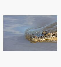 Silent Approach Photographic Print