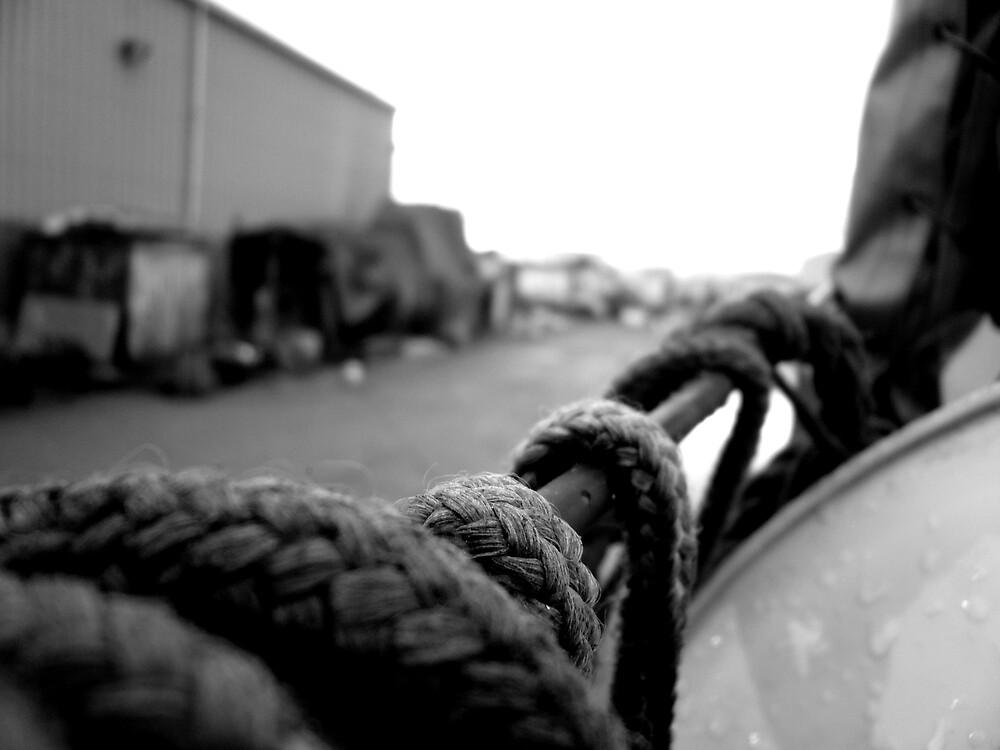 roped in by splinterbox
