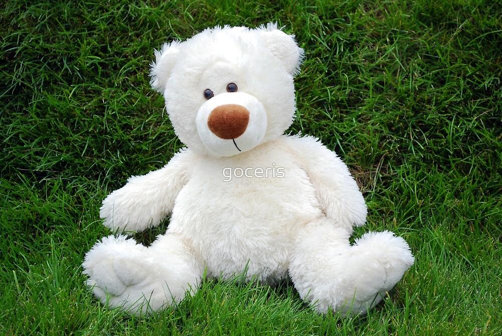 White teddy-bear sitting in grass by goceris