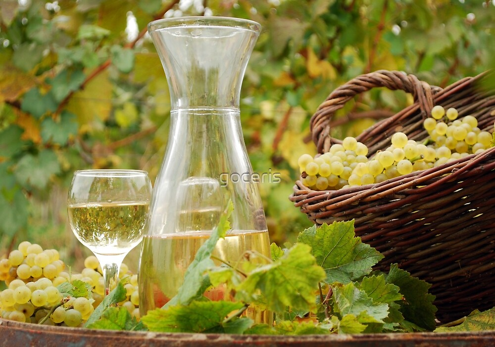 White wine and grape in vineyard by goceris