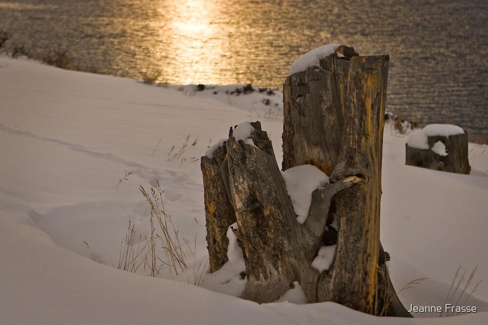 Winter glow by Jeanne Frasse