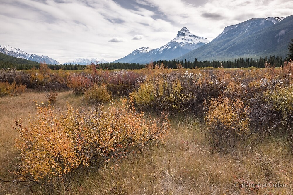 Moose Meadows #2 by Christopher Cullen