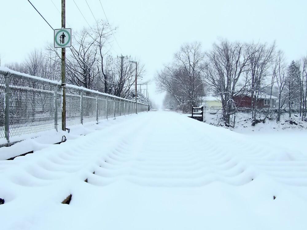 Fresh Snow  #3 by marchello