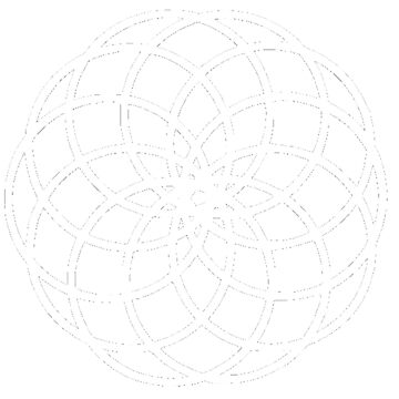 10-Petal Flower of Life Torus Star by evolucion