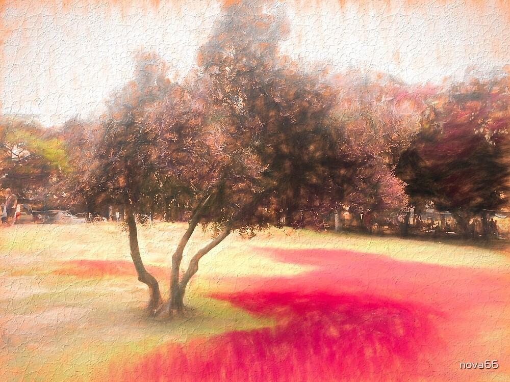 The Raanana Park 1 by nova66