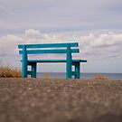 The Blue Bench by Rae Tucker