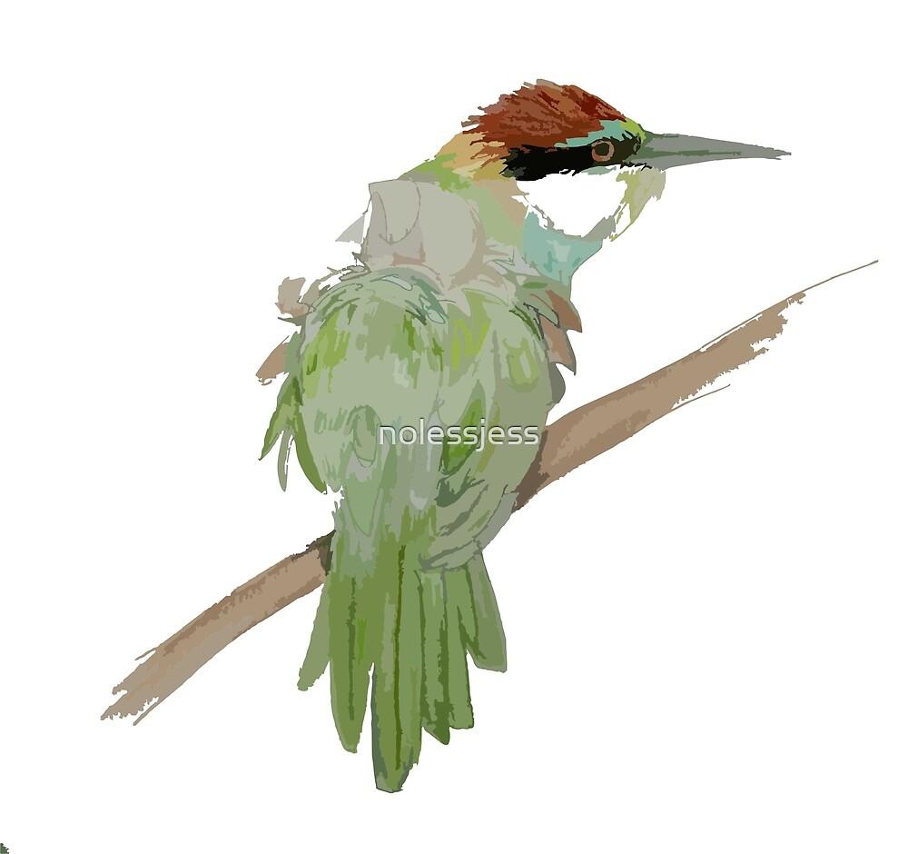 Bee-eater by nolessjess