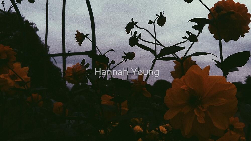 grey skies by Hannah Young