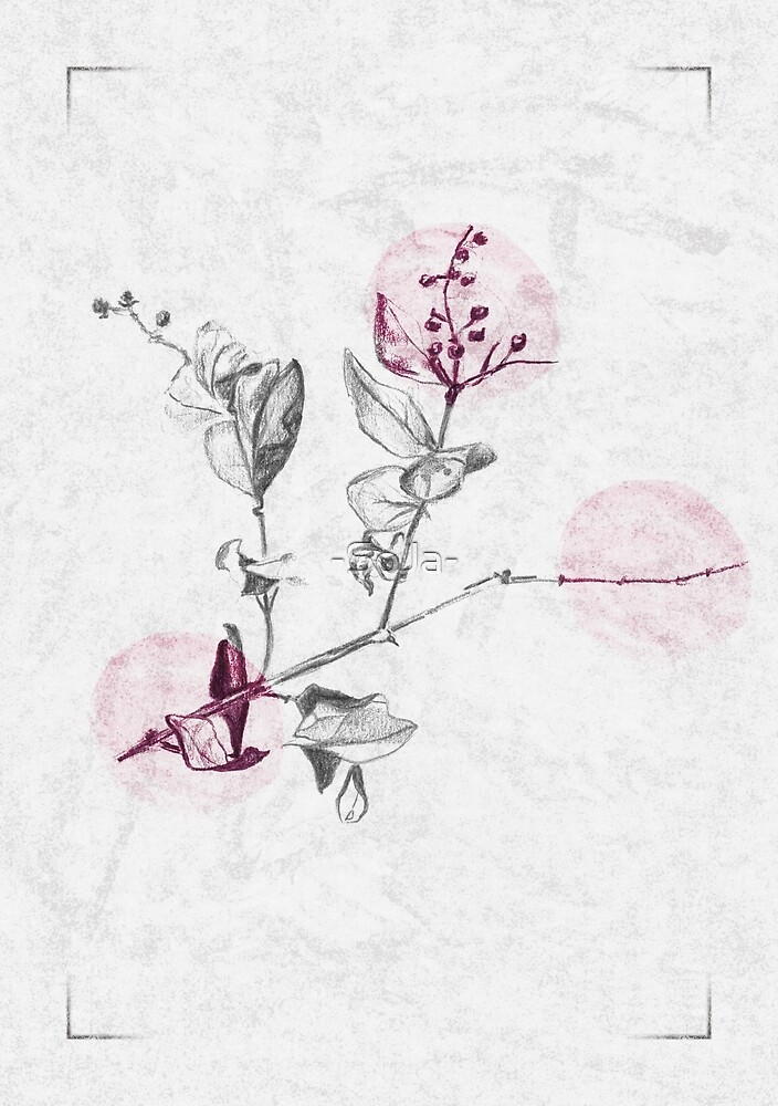 Delicate - Vibrant Pink by -SoJa-