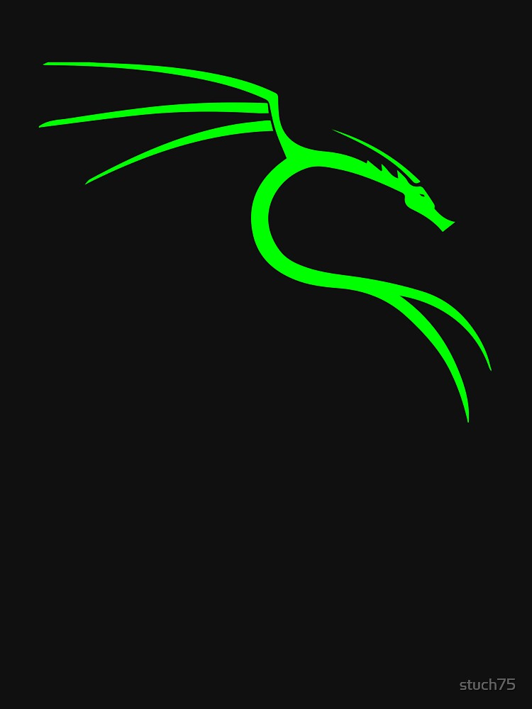 Hacker Dragon by stuch75