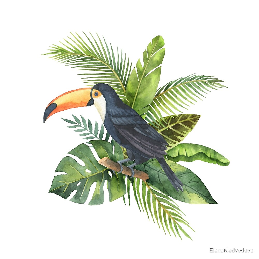 Bouquet of tropical leaves and toucan. by ElenaMedvedeva