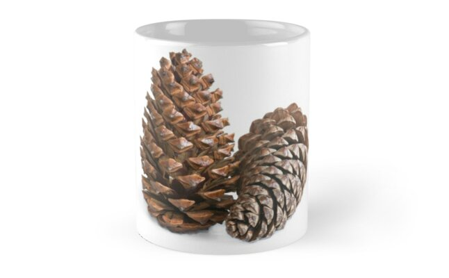 Two pinecones by igorsin