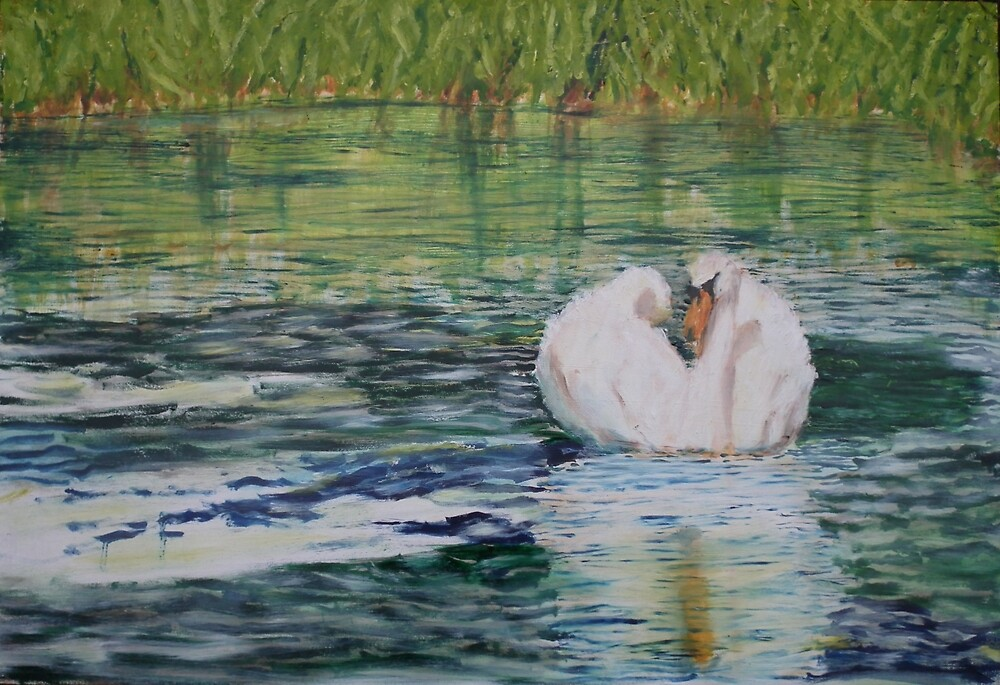 River Nene Swan by Peter Lythgoe