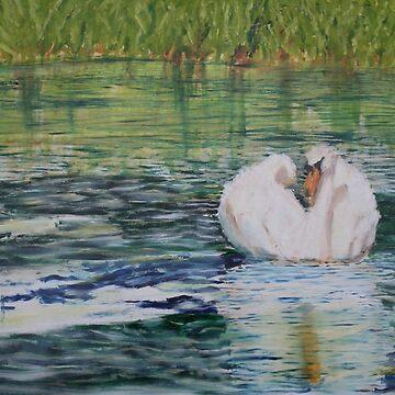 River Nene Swan by pjlythgoe