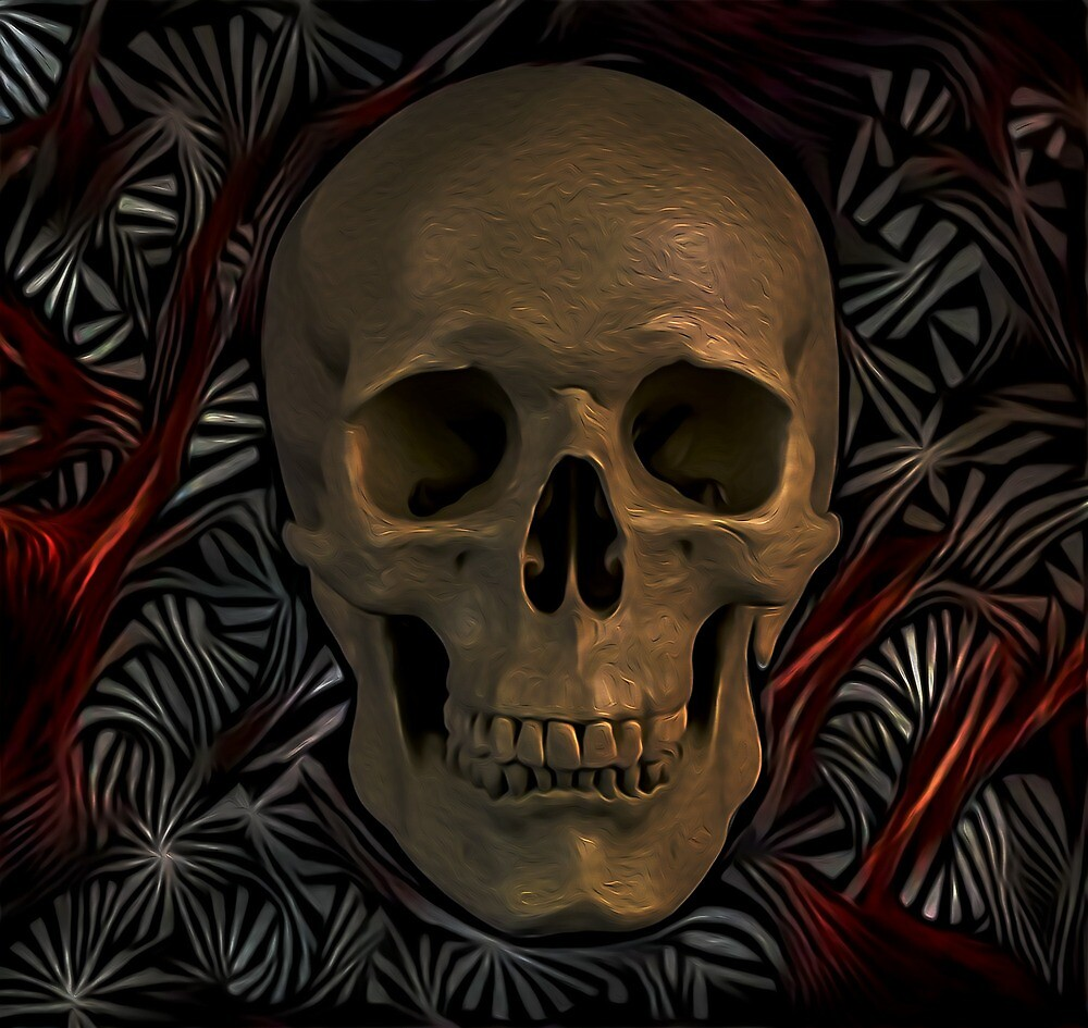 skull  by Donkeh23