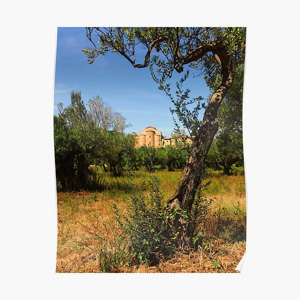 Italy, olive trees and an ancient abbey Poster