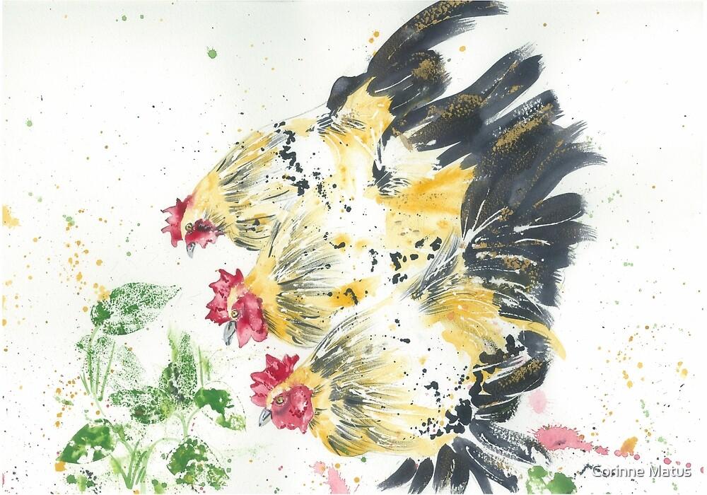 Three Hens by Corinne Matus