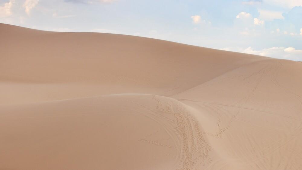 Desert landscape dunes in Vietnam. by Eduard Todikromo