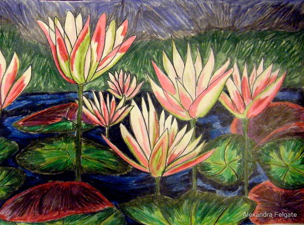 Waterlilies by Alexandra Felgate