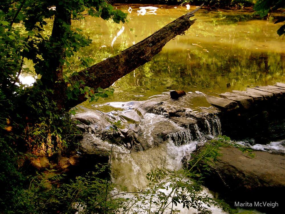 Summer Stream by Marita McVeigh
