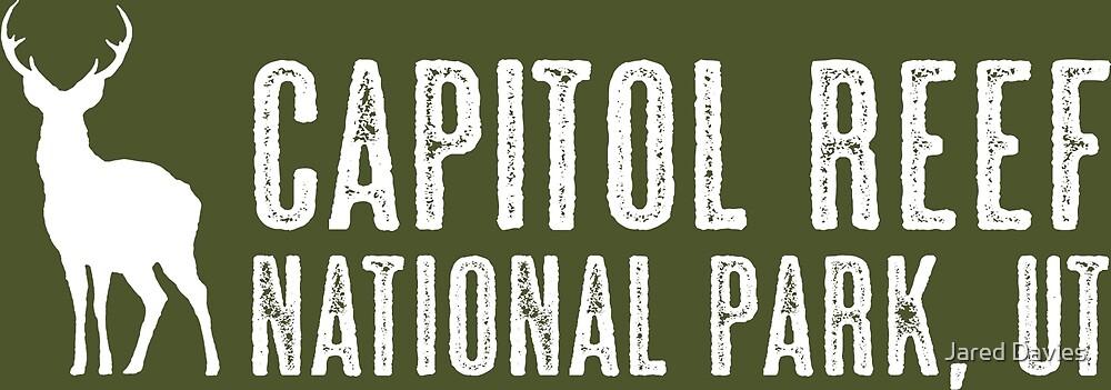 Deer: Capitol Reef National Park, Utah by MilitaryCandA