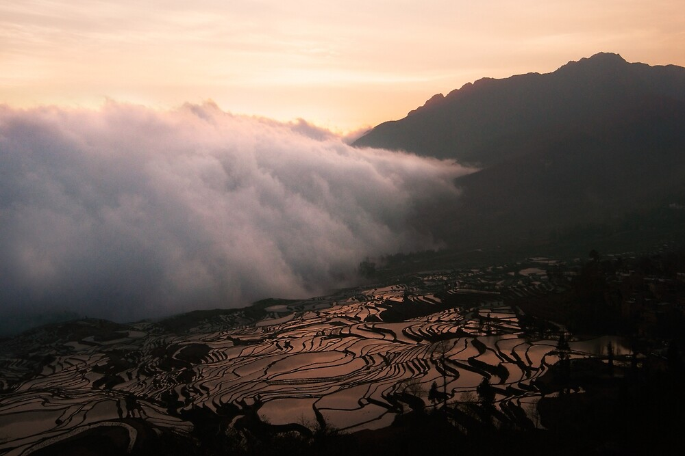 Cloudy mist covering chinese valley rice field landscape. by Eduard Todikromo