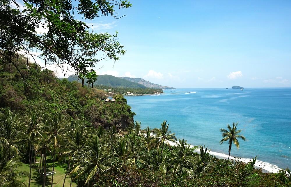 High ocean view in Bali, Indonesia. by Eduard Todikromo