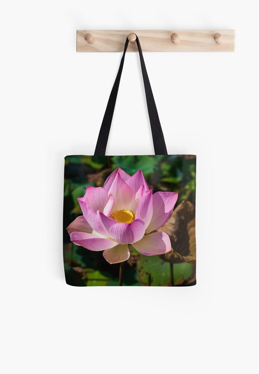 Lotus by Zzart