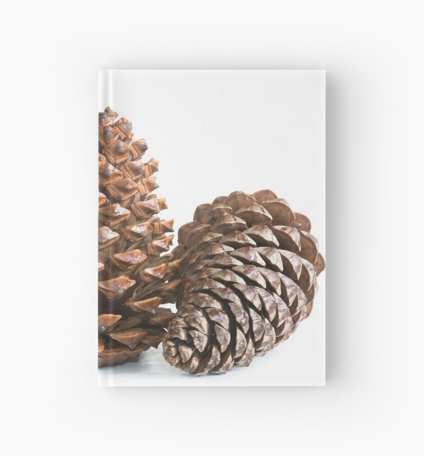 Three pinecones by igorsin