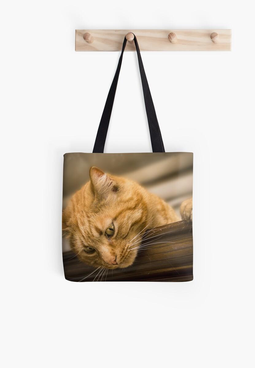 Cat by Zzart