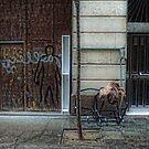 [P1170201 _XnView] by Juan Antonio Zamarripa [Esqueda]