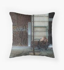 [P1170201 _XnView] Throw Pillow