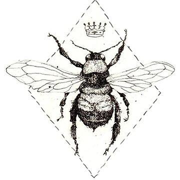 Bienenkönigin von yunnn