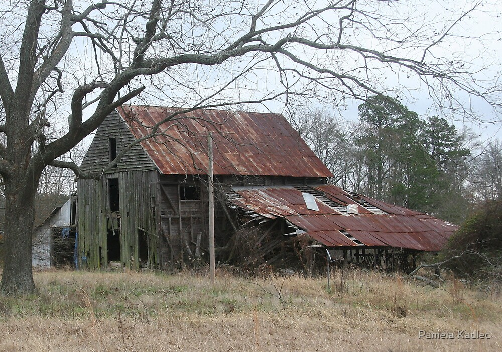 Georgia Barn by Pamela Kadlec