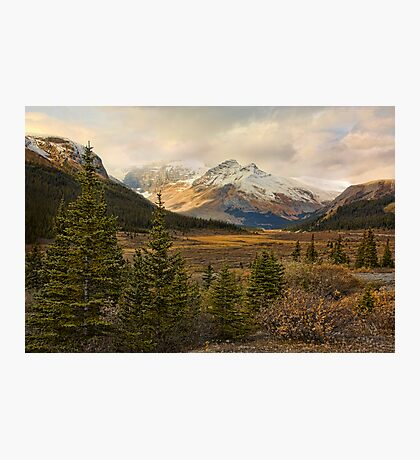 The Icefields Parkway  Photographic Print