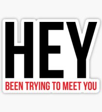 HEY been trying to meet you Sticker