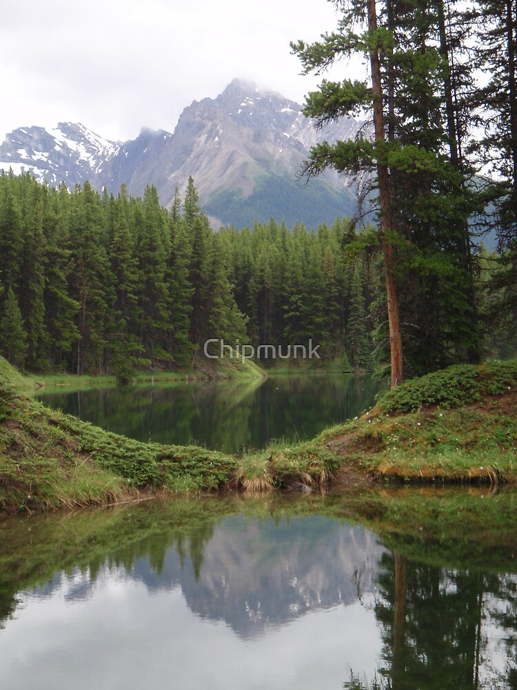 Moose Lake by Chipmunk