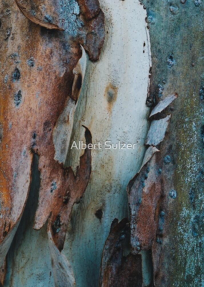 Under the Tree Bark by Albert Sulzer