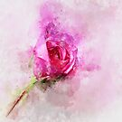 Gorgeous Pink Rose - Loose Watercolor by ibadishi