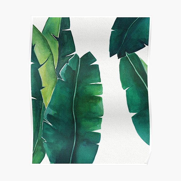 Banana leaves with wonderful contrast and canvas effect.  Poster