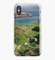 The Silver Strand iPhone Case