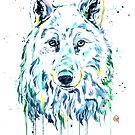 Arctic Wolf by Lisa Whitehouse
