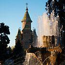 Timisoara Fountain by Rae Tucker