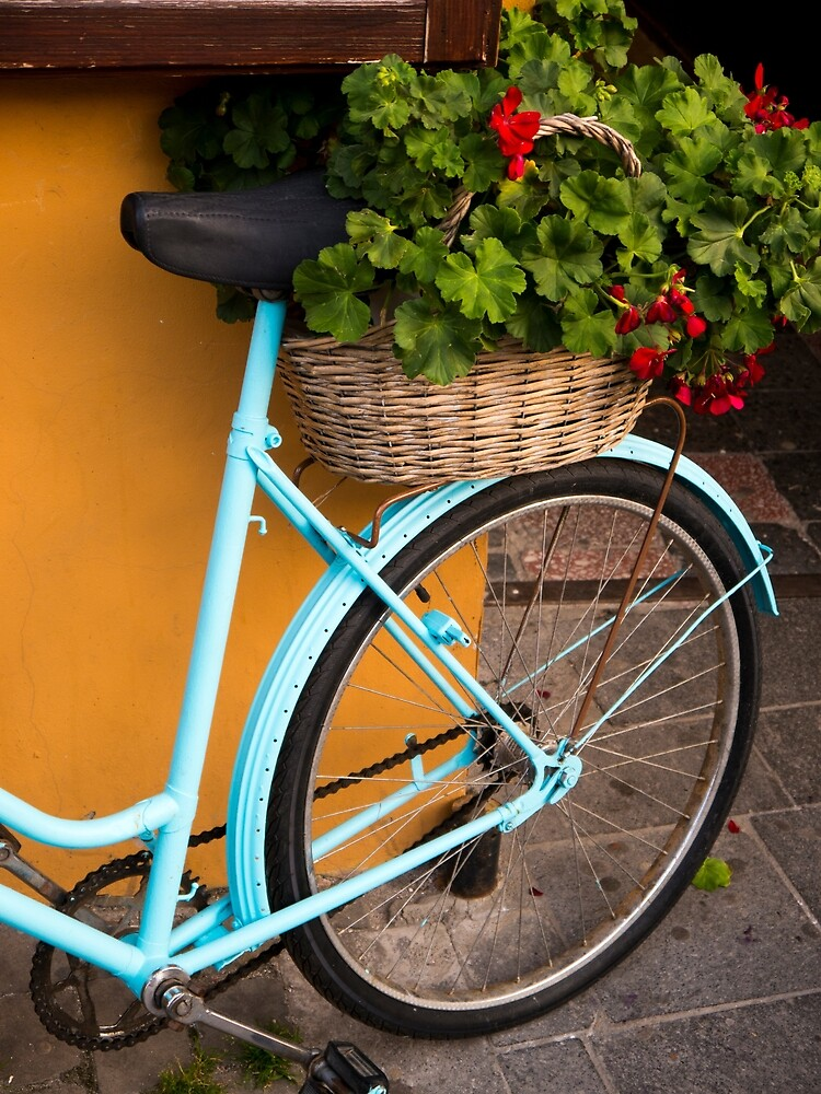 Bicycle Geraniums by Rae Tucker