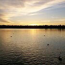 Sunset in Greenlake Park by WaleskaL