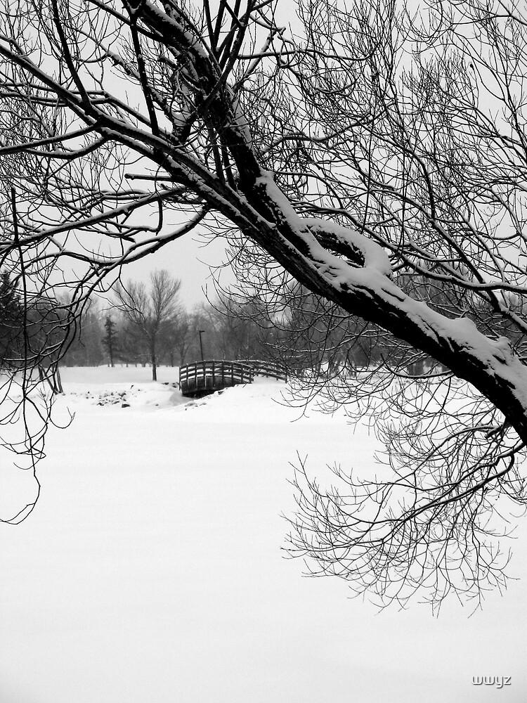 Winter Park Scene by wwyz